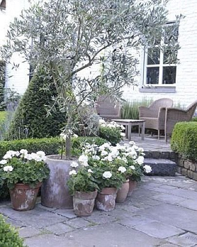 Nytt år... Nya ideer och tankar. Dags att göra något åt trädgården #pinterest #interior4all #inspiration by bynilsgarden