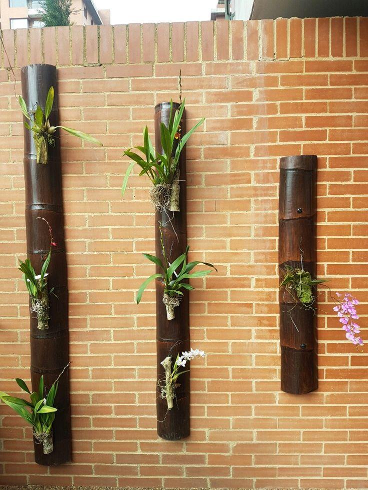 pared con orquideas odontoglossum y palma m