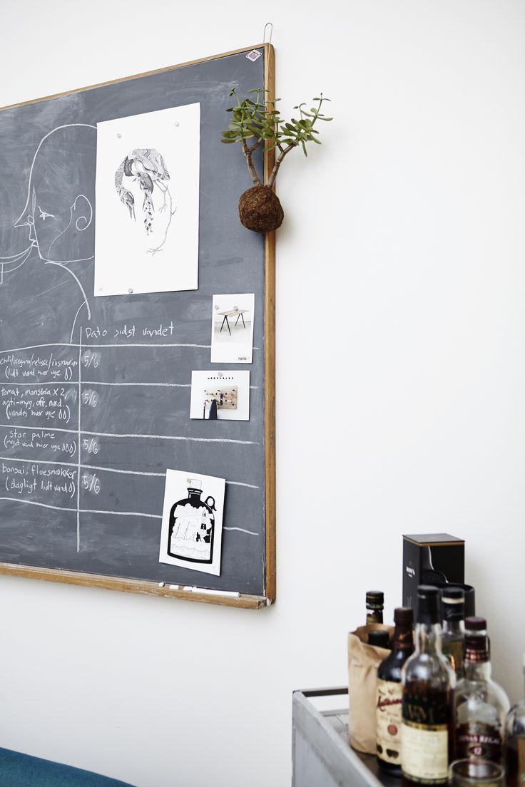 Living room - Stewardesse trolley turned mini bar - Planteplanet (hanging plant) - DIY magnetic chalkboard