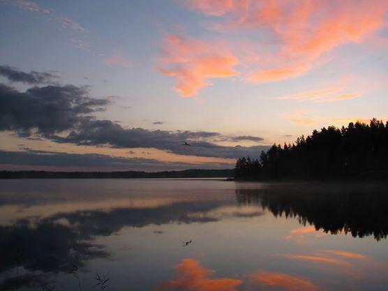 Satumainen aamu Joutsjärvellä