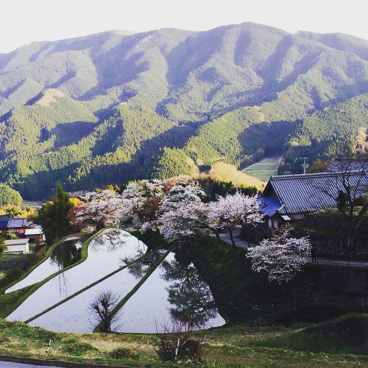 隠れ人気スポットがひしめく。「三重県」のおすすめ観光スポット20選   RETRIP[リトリップ]