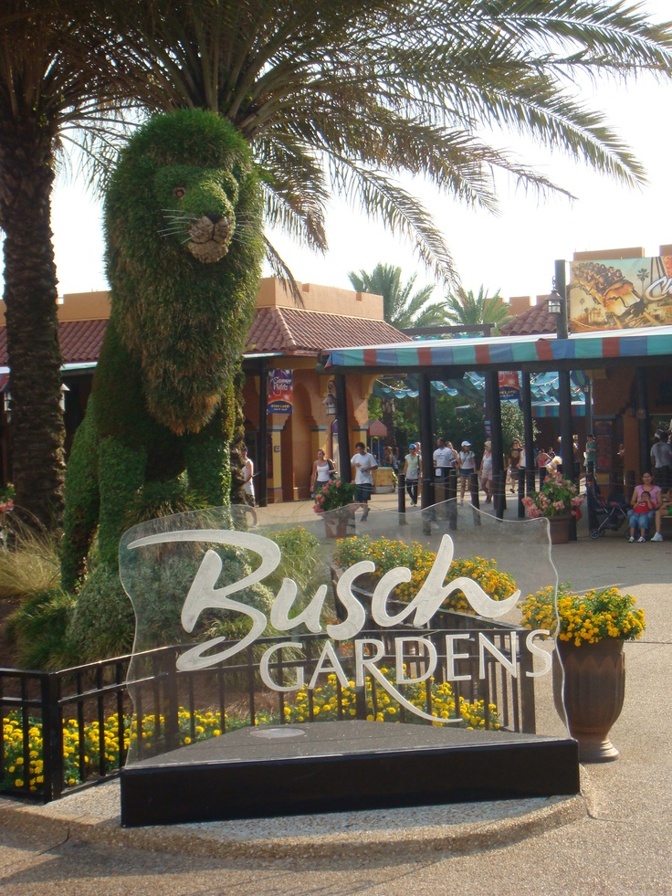 23 best tampa orlando miami beach images on pinterest How far is busch gardens from orlando