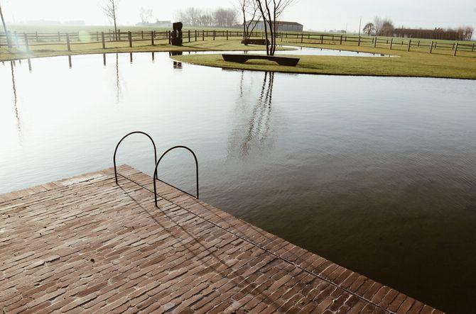 zwemvijver, landelijke tuin, kleiklinker, zwembadtrap