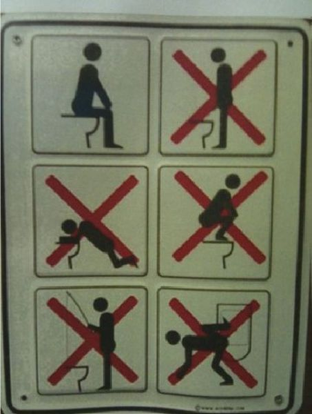 how to use the toilet....VERY important!