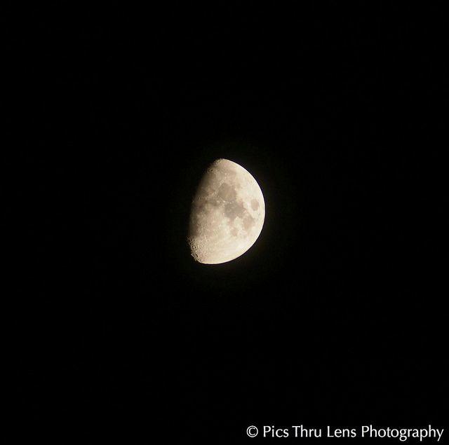 The half faced Moon.