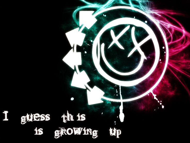 Blink 182 - The first band I ever started listening to that got me into the whole rock genre - They also influenced me to start playing Guitar