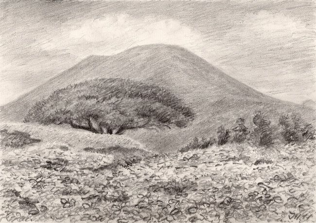 Pinia and Vesuvius. Pencil drawing by Jana Haasová