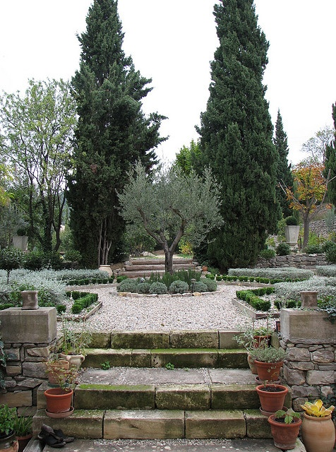 Mediterranean Garden in Herault, Languedoc-Roussillon, France. I love a bit of formality in the garden, lots of inspiration in this photo