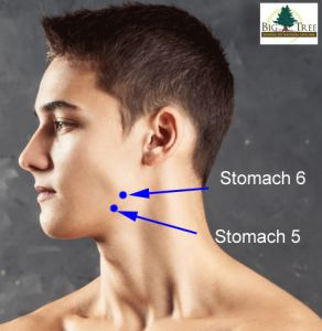 Stomach 5 and Stomach 6 are used to relieve jaw tension.