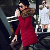 Wish | 2017 Winter Women Slim Fit Casual Fur Hoodie Cotton Coat Down Coat Jacket Outwear BA0612