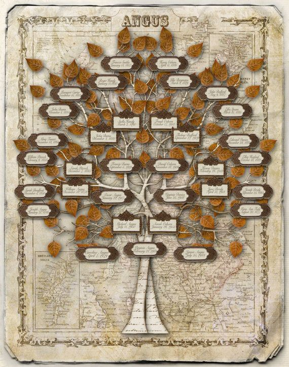 scottish family tree design labels on a by creativefamilytree 18500