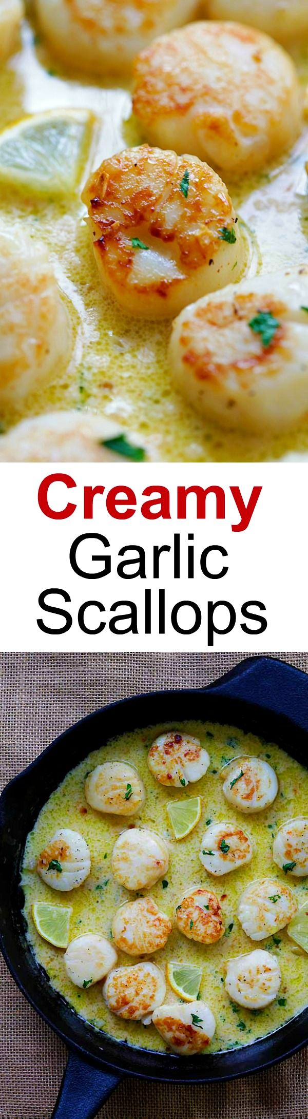 Creamy Garlic Scallops – easiest, creamiest and best scallop recipe ever. Takes only 15 mins, better than restaurants and much cheaper | rasamalaysia.com