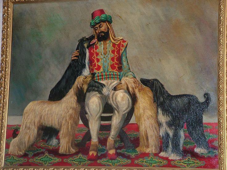 Afghan Hound Art | Hound breeds, Afghan hound, Dog art