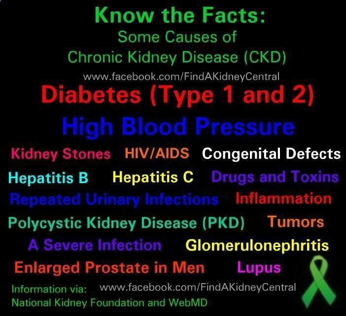 Insurance Quote For 19 Year Old Female: 21 Best Kidney Awareness Images On Pinterest
