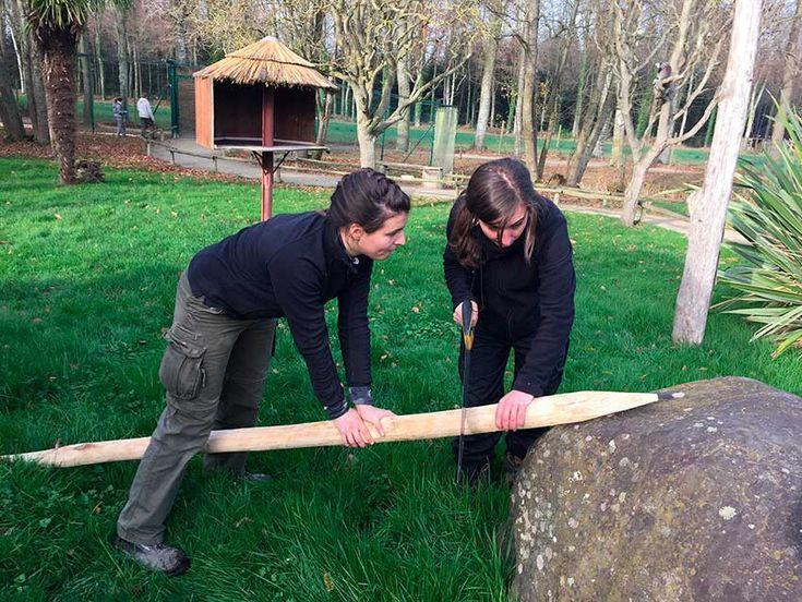 Formations métiers animaliers en parc zoologiques - MFR Carquefou
