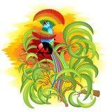 Vector: Uccello del Paradiso Esotico Fantasia-Exotic Paradise Bird