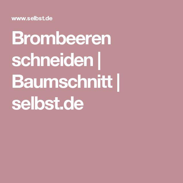 Brombeeren schneiden | Baumschnitt | selbst.de