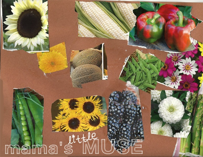 images about Seed catalog ideas for children on Pinterest