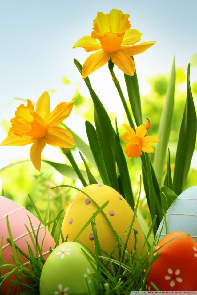 14 best easter backgrounds pictures wallpaper christain - Religious easter wallpaper ...
