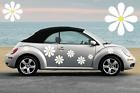 This is VW is cute as a bug!