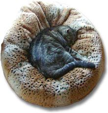 Beddy Balls are back in stock! These oh-so-cozy beds are covered with ultra-soft, beautiful material, and they are the ultimate in cat bed comfort. Available in two gorgeous colors. Very limited suppliesClick here for beddy balls