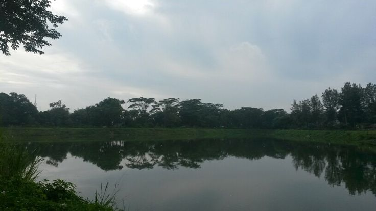 The view at jogging track