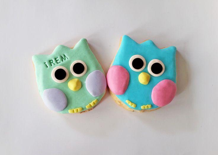 cookizm, şeker hamuru, kurabiye, cookies, iyi ki doğdu, cookie, birthday, doğumgünü, baykuş, hediye, gift, tasty, leziz, love, tasarım, design, kids, rengarenk, owl