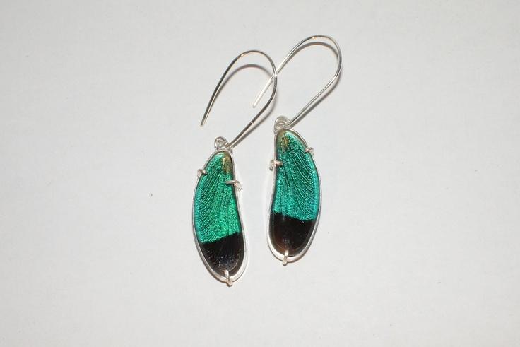 Dragonfly Earrings. by Emily-Eliza Arlotte