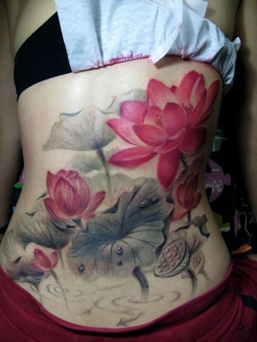 By Yang Zhuo. water lily tattoos