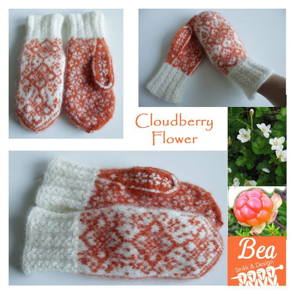 Cloudberry flowers tova votter