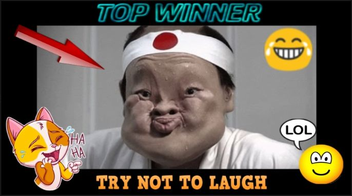 Try Not To Laugh Challenge Funny Videos 38 Challenges Funny Funny Gif Try Not To Laugh