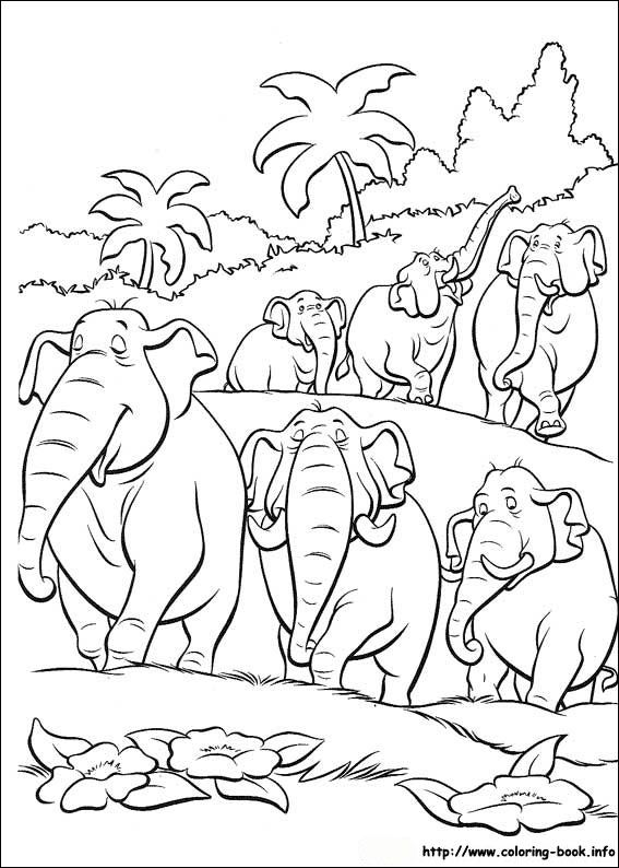 Jungle Animal Colouring Book 135 Best Images On Pinterest