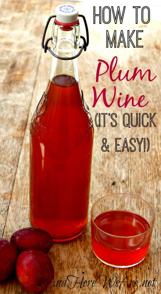 """Quick and Easy Plum Wine recipe from """"And Here We Are..."""" - sounds delicious!"""