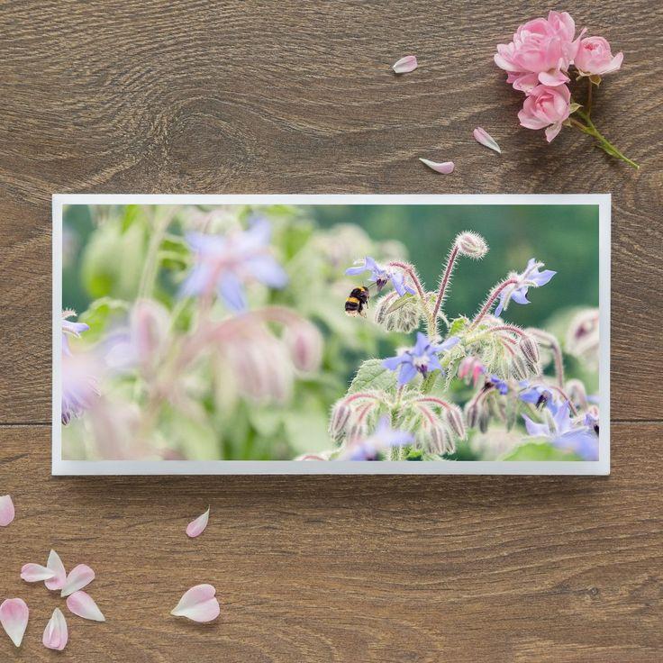 Single Blank Card by landscape photographer Nina K Claridge – Bee for Borage