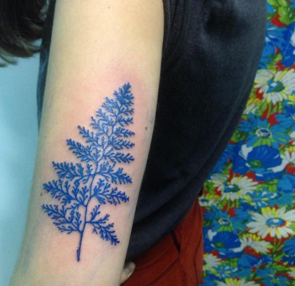 Blue ink fern by Ana Carolina Orlandin