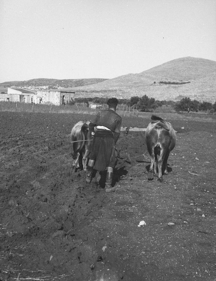 Crete 1941 by Ernst Weigt