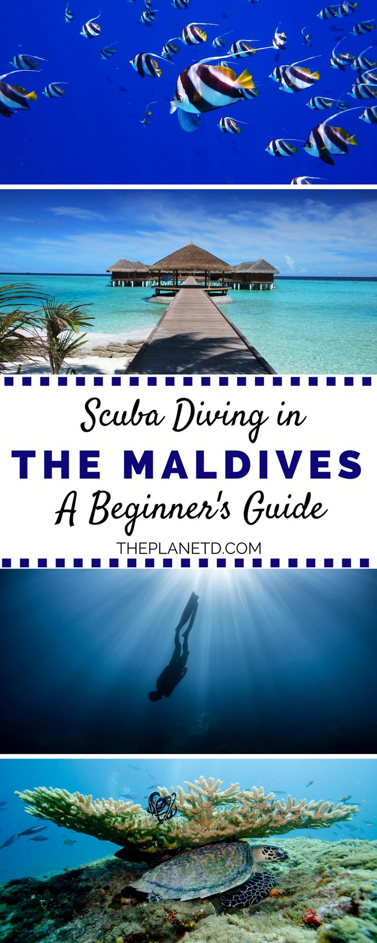 The Maldives is an island destinations that is well know for its incredible snorkeling and scuba diving experiences. This guide looks at learning to scuba dive in the Maldives as a beginner diver. What to expect, practical tips and common sea life and animals. Adventure travel in the Maldives.  | Blog by the Planet D #Maldives #Scuba
