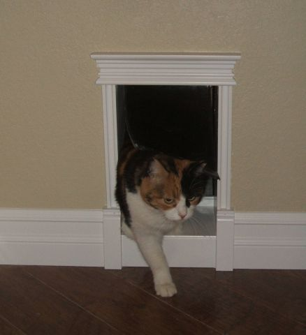 So With Our Laundry Room Reno The Kitty S Need A Custom Cat Door To Lead Them From Entry Way Their Litter Bo Under Stairs