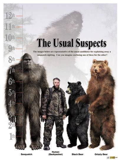 """hah ha... I can see Renee (Finding Bigfoot) saying now, """"I just can't say it was a bigfoot. It could have been a person, or bear...."""""""