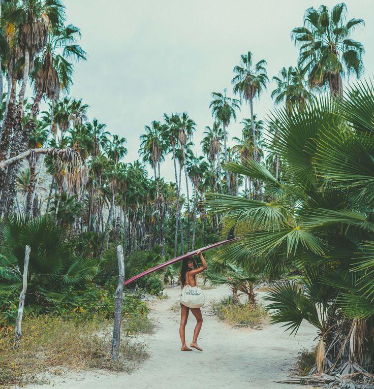 Island State Co island life inspo    palm trees, ocean breeze, sun, sand, salty ocean air, tropical island paradise    @islandstateco #islandstateco #islandlife