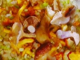 Funghi di Bosco in Umido: Mushroom Ragu from CookingChannelTV.com
