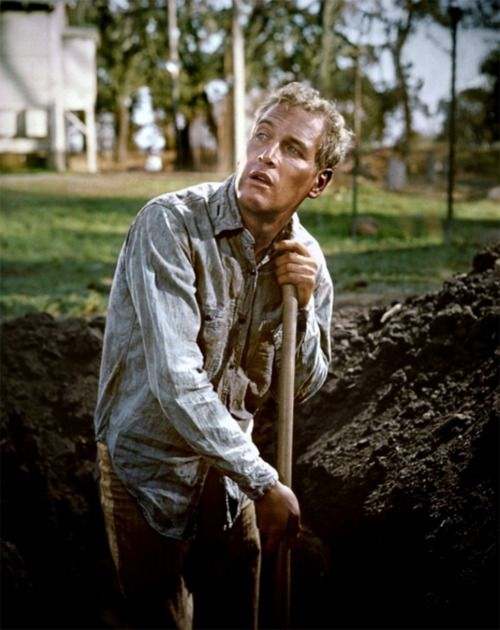 """...you gonna get your mind right."" ~ Movie: ""Cool Hand Luke"""