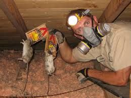 Attic Cleanup Insulation Removal Playa Del Rey CA
