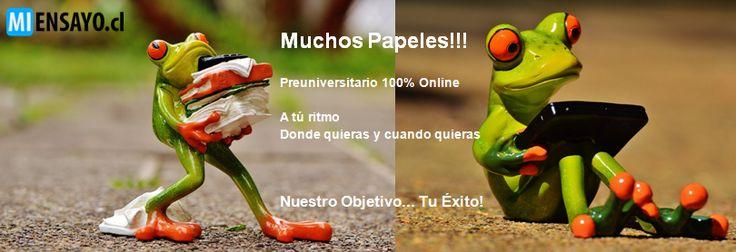 www.MiEnsayo.cl