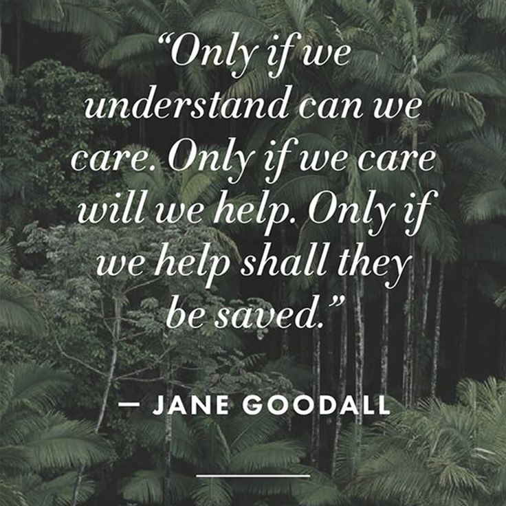Jane Goodall Quotes: Best 25+ Mother Nature Quotes Ideas On Pinterest