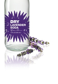 Dry Lavender Soda. Mix it with Absolut Citron for a light summery drink. Dry Soda also comes in lime, vanilla, blood orange, cucumber, rhubarb, and juniper berry.