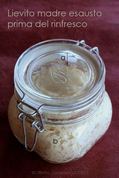 http://www.gastronomiamediterranea.com/2012/02/i-miei-segreti-sul-lievito-madre-rinfresco/