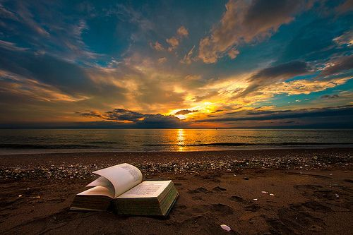 A book on the beach is just beautiful.
