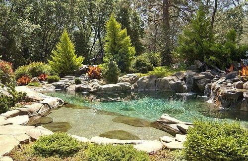 Best 10 Swimming Pool Pond Ideas On Pinterest Natural Pools Natural Backyard Pools And