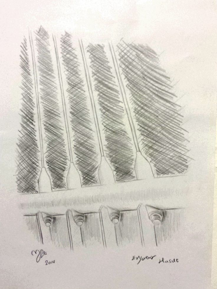 Santiago Calatrava - Strings.